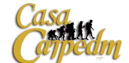 Casa CarpeDM Advisor